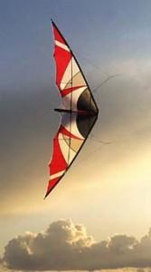 Vliegers en vlieger toebehoren online kopen - Hoogvliegers